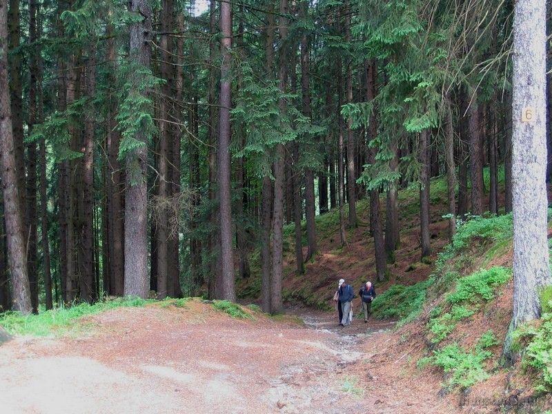 útban a Wolfsbergi kőfejtőhöz