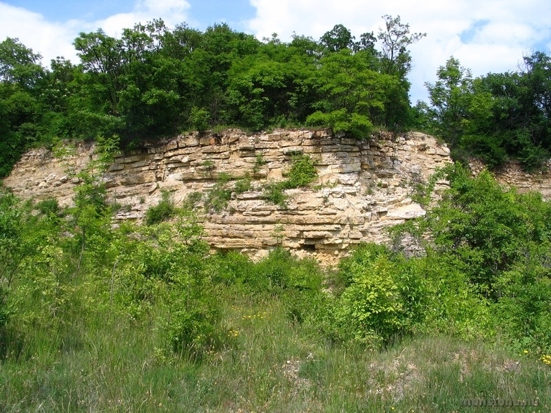 A pados Füredi Mészkő formáció