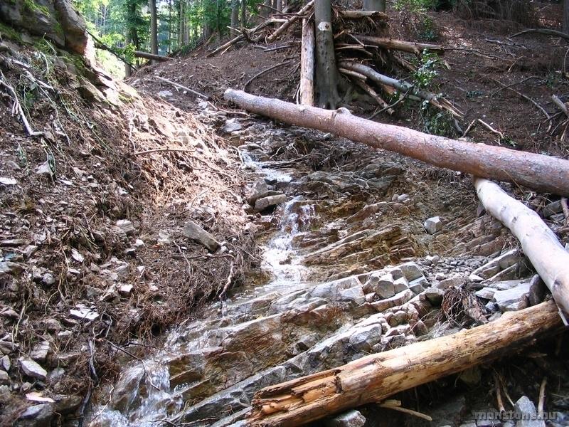 Frissen keletkezett vízesés a Tolvaj-árokban