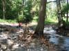Hűsölés és ebéd a Tolcsva-pataknál